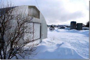 凍死条件温度