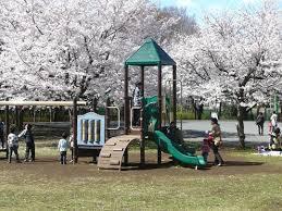 公園でイチャイチャ