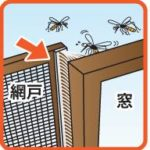 網戸の隙間テープの貼り方の方法や虫が入ってこないようにする注意点は?
