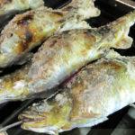 鮎にいる寄生虫はどんなの?人間に起きる症状や食べない対策は!
