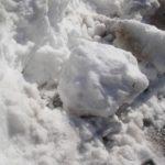 凍った雪を早く溶かす方法!塩・シート・薬・お湯でのやり方!